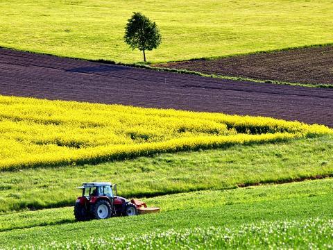 Jornada Agricultura COBADU Moraleja del Vino.