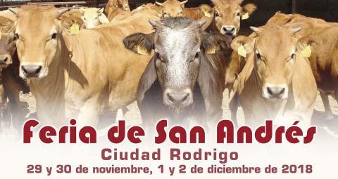 Feria de San Andrés CIudad Rodrigo